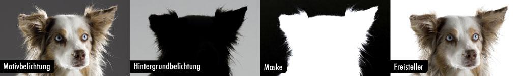 02_freemask