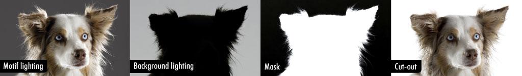 03_freemask