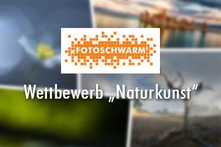 Fotowettbewerb Naturkunst